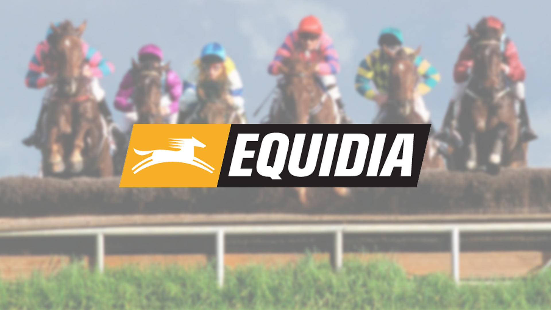 Logo Equidia en direct