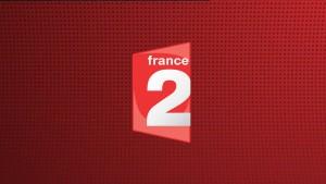 Logo France 2 Live