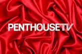 Logo Penthouse HD TV Live