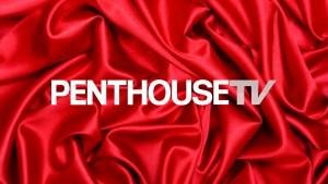 Logo Penthouse HD TV Live